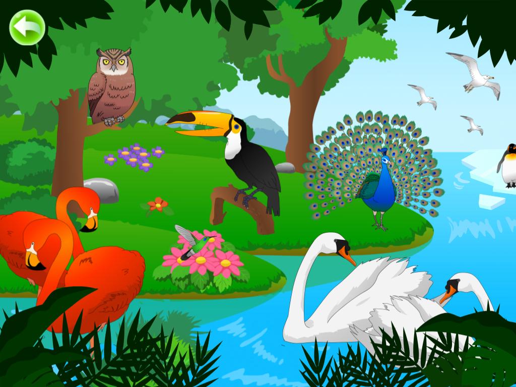 Birds for Kids HD - 猫猫探秘飞鸟乐园 HD - 普通话+粤语+英语发音 - 猫猫探秘飞鸟乐园 HD - 貓貓探秘飛鳥樂園 HD - 國語+粵語+英語發音